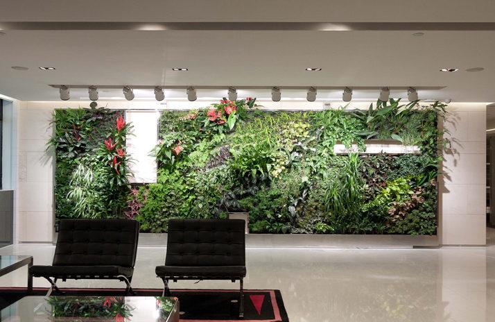 Plantenwand filtert vieze lucht