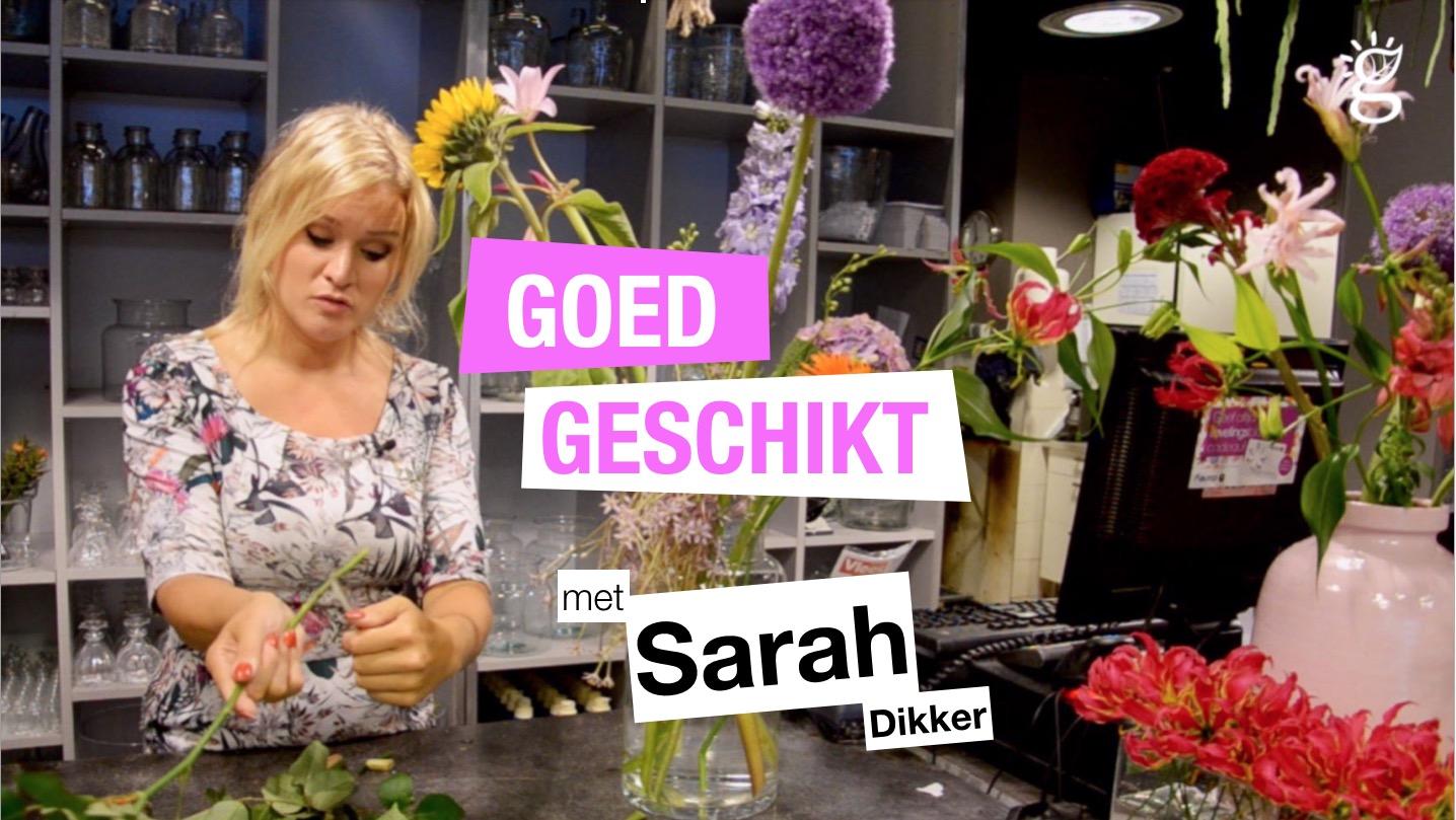 Goed Geschikt met Sarah