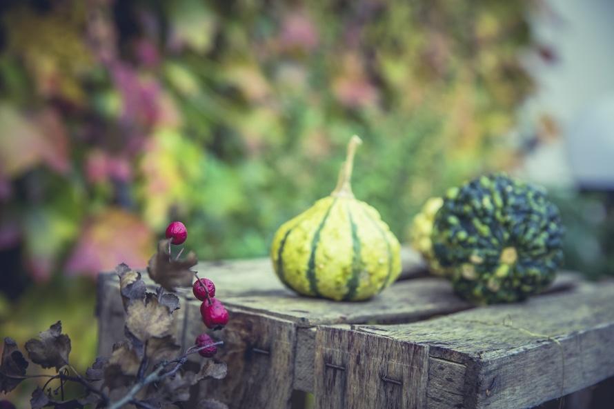 oktober-pompoenen