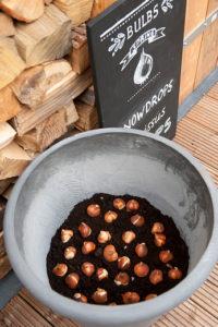 Lasagnebeplanting: tulp2