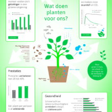 Into Green Infographic