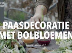 Paasdecoratie met bolbloemen.001