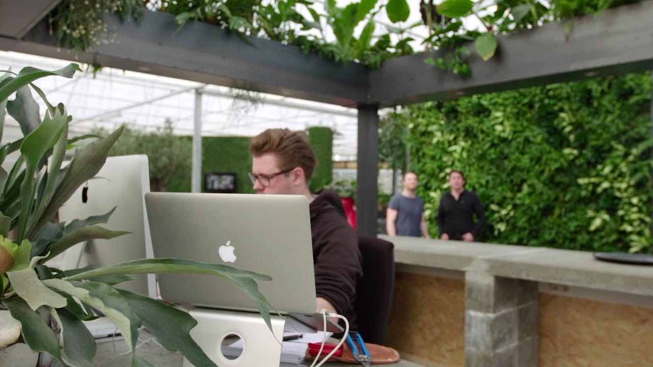 Gezonde trend: een groene wand in je huis, kantoor of tuin!