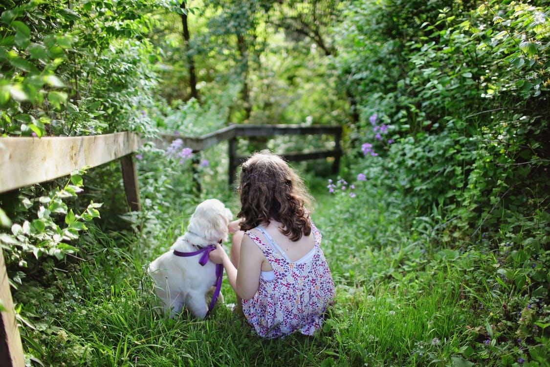Rapport: Natuur maakt mensen gezonder