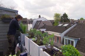 Lodewijk op balkon