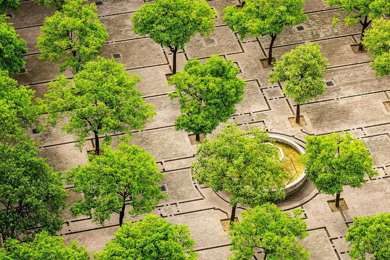 Gezondheidsraad: 'Meer groen nodig in de stad'
