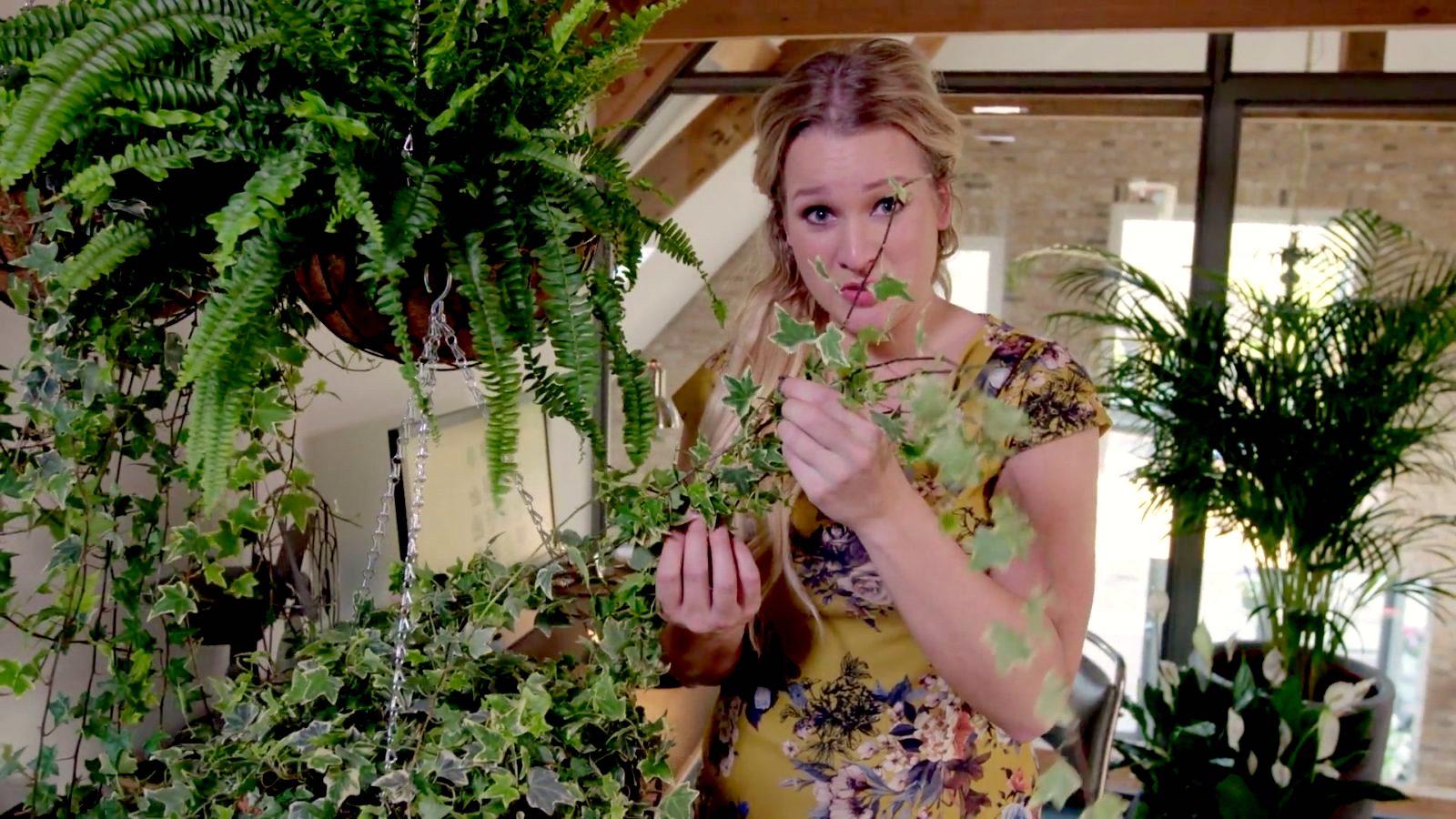 Tip van Sarah: Groen in huis helpt tegen een winterdip!