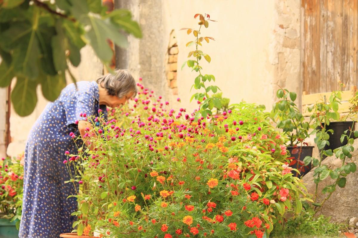 Het geheim van gezond (heel) oud worden: tuinieren!