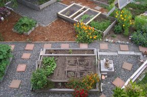 garden-509550_1920