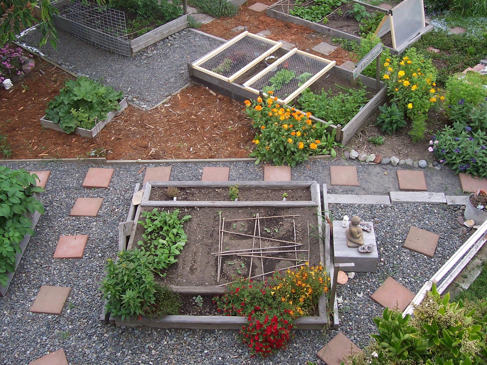 Een natuurlijk stukje tuin in de stad