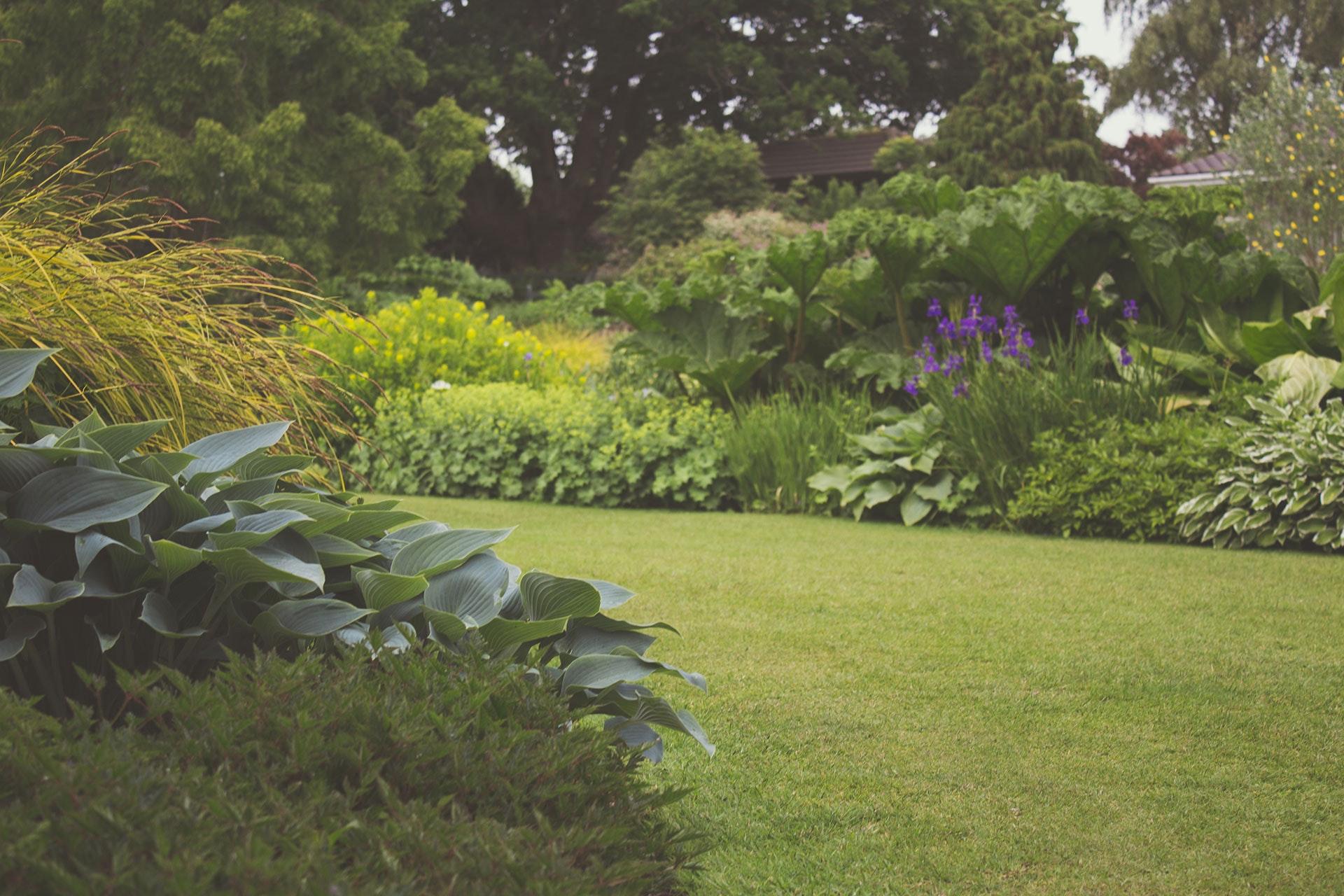 Zo creëer je een relaxte zomertuin