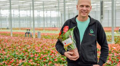 Johan van der Houwen, mede-eigenaar Houwenplant